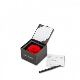 Flowercube L - Rouge
