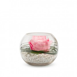 Verrine Venezia 13 - Rose pastel