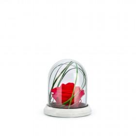 Cloche Ciment S Rouge